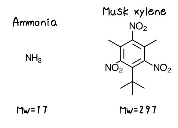 分子量でのにおい物質