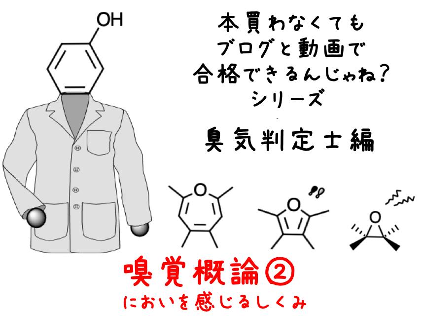 臭気判定士編嗅覚概論②