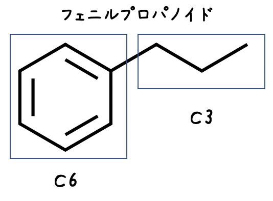 フェニルプロパノイド